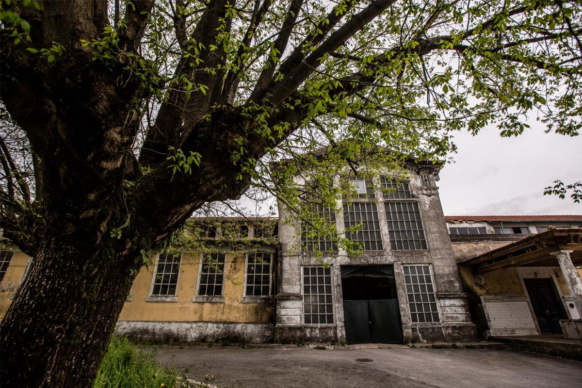 Mota-Engil, ABB and Lucios Consortium are disputing Porto's Slaughterhouse | in Público